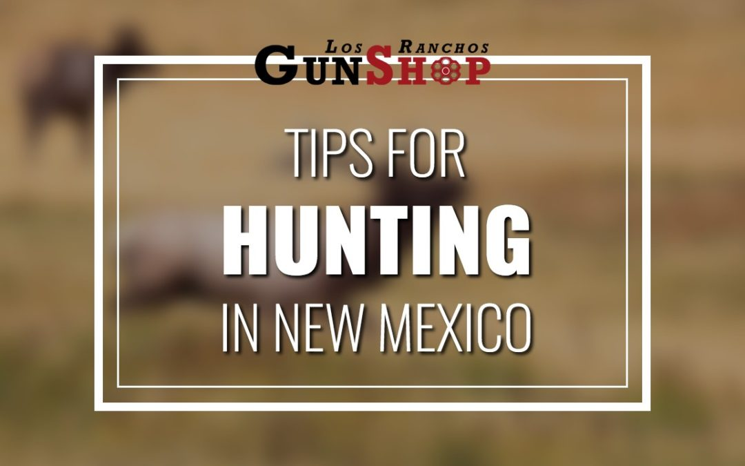 Albuquerque Gun Shop Talks About Tips for Hunting in New Mexico